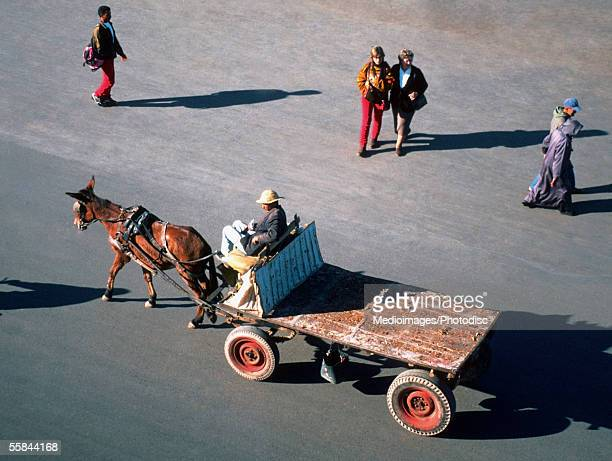 Tourists with a horse drawn carriage , El Fina Square, Djemaa, Marrakech, Morocco