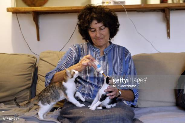 Tova Saul an Orthodox Jew feeds stray cats at her home in Jerusalem's Old City on July 12 2017 For more than two decades Tova has fed and cared for...