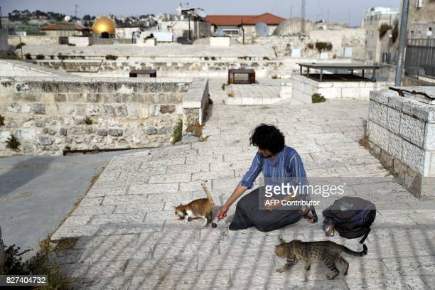 Tova Saul an Orthodox Jew feeds stray cats in a neighbourhood in Jerusalem's Old City on July 12 2017 For more than two decades Tova has fed and...