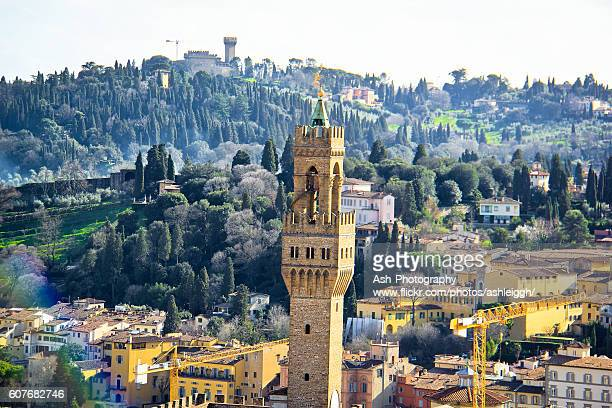 Tower of Arnolfo - Florence, Italy