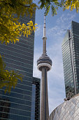 Toronto's CN Tower is framed by buildings and foliage.