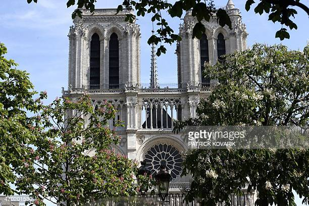 Towers of NotreDame cathedral are seen behind flowering trees on April 18 2015 in Paris AFP PHOTO / PATRICK KOVARIK