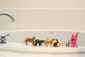 Toy animals on a bathtub