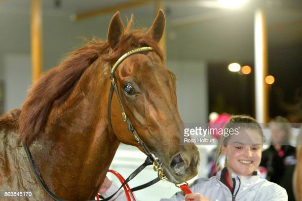 Toy Boy after winning the Sportsbet Racing Form BM70 Handicap at Racingcom Park Racecourse on October 20 2017 in Pakenham Australia