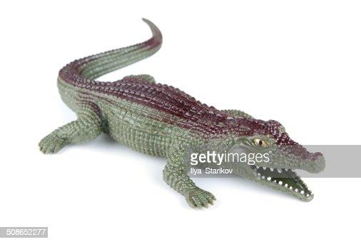 Toy crocodile : Stock Photo