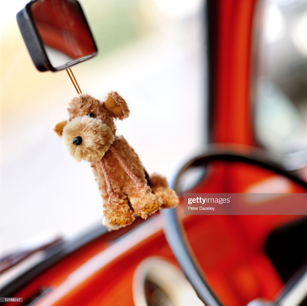 Toy dog hanging on rear view mirror : Stock Photo