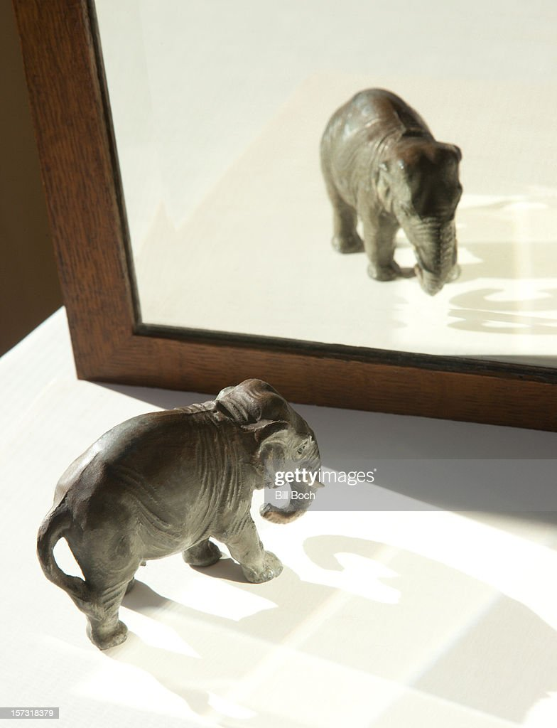 Toy elephant and reflection