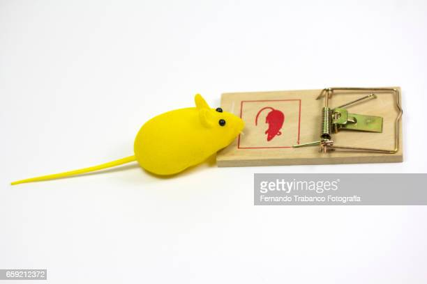 Toy mouse in a mousetrap