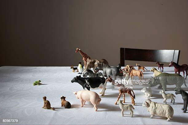 toy plastic animals, fog at front