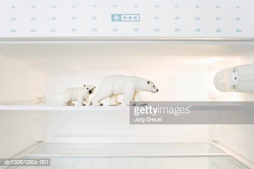 Toy Polar bears in freezer