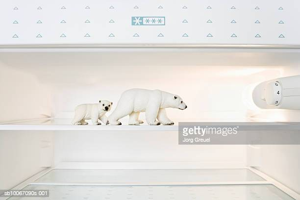 Toy Polar bears in freezer