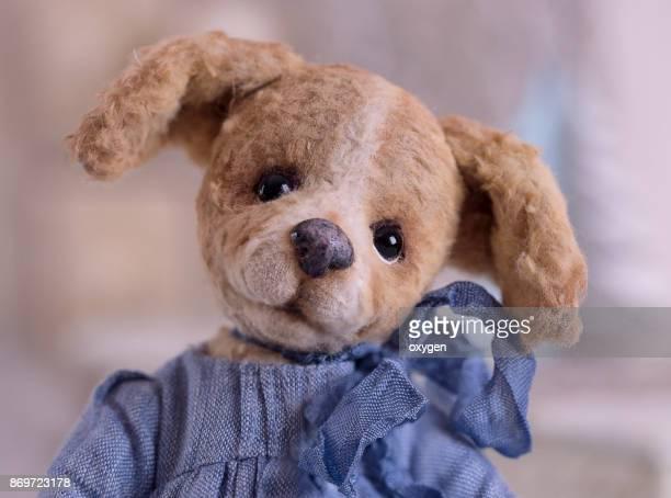 Toy Teddy Dog Girl portrait on blue dress
