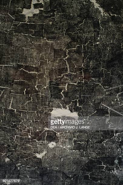 Traces of cloth from the palaestra Herculaneum Campania Italy Roman civilisation 1st century BC Detail
