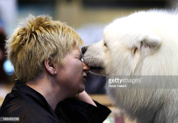 Tracey Elder from Fyfe is given a lick on her face by her Samoyed Bolan dog during the final day at Crufts Dog Show on March 10 2013 in Birmingham...