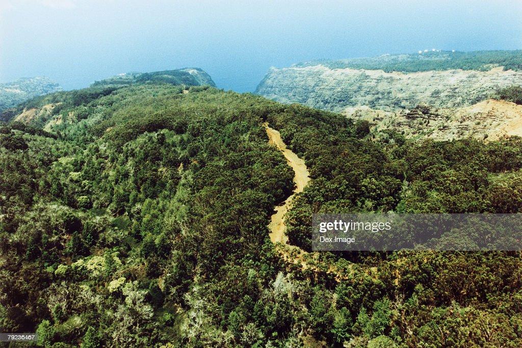 Track in lush green landscape, Kauai, Hawaii, aerial view : Stock Photo