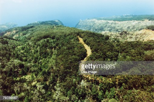 Track in lush green landscape, Kauai, Hawaii, aerial view : Stock Photo