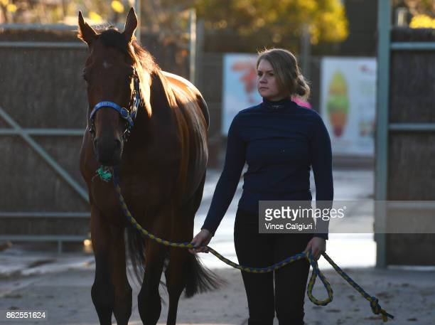 Track rider Emilia Putkinen walks with Jon Snow after a Trackwork Session at Flemington Racecourse on October 18 2017 in Melbourne Australia Murray...