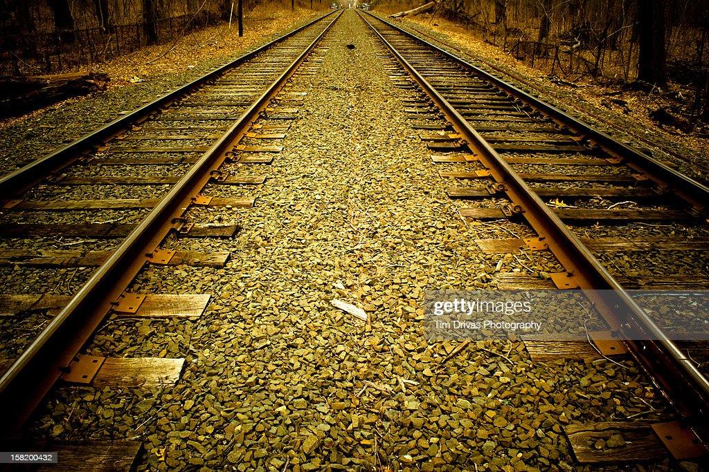 Tracks : Stock Photo