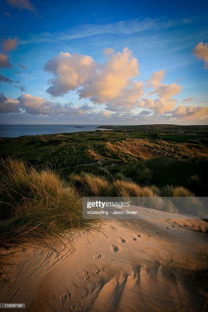 Tracks, towards Godrevy Lighthouse, Cornwall : Stock Photo