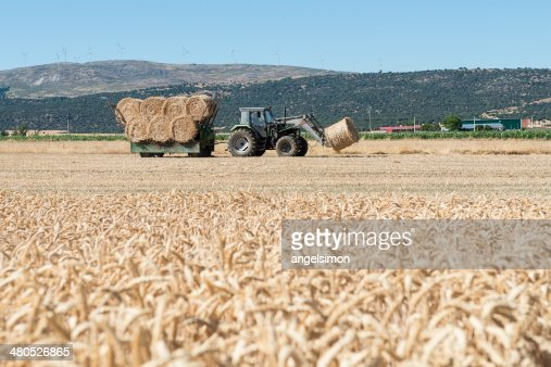Tractor and straw bales : Stockfoto