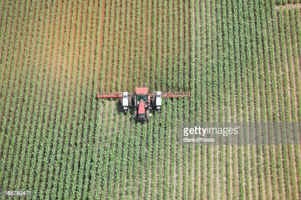 Tractor Applying Liquid Nitrogen Fertilizer to Corn Field