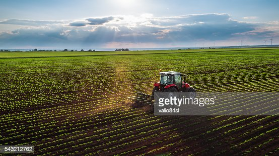 Tractor cultivating field at spring : Stock Photo