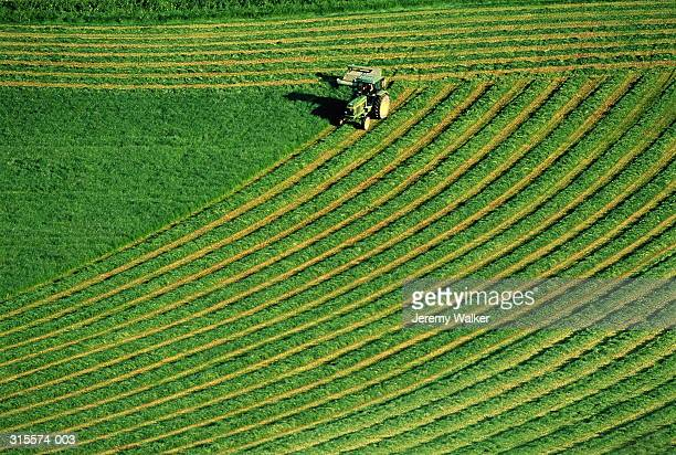 Tractor cutting grass for silage, overhead view of patterns in field