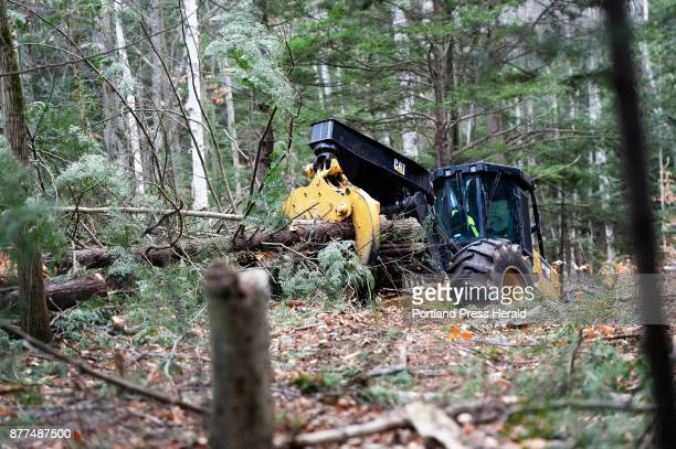 A tractor drags hemlock trees from the land at Great Works Regional Land Trust that were cut down because they've found an invasive pest known as...