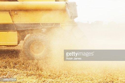 Tractor harvesting grains in crop field : Stock Photo