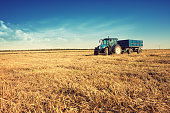 Tractor in the stubble field