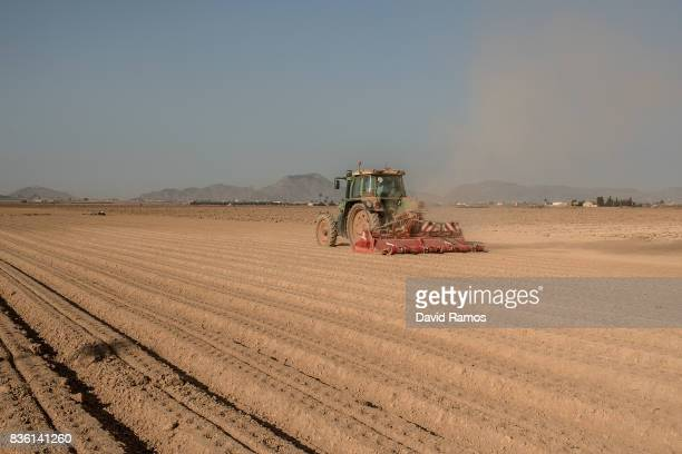A tractor kicks up dust as it drives through an unplanted field of the agricultural region of El Campo de Cartagena on July 28 2017 in Los Alcazares...