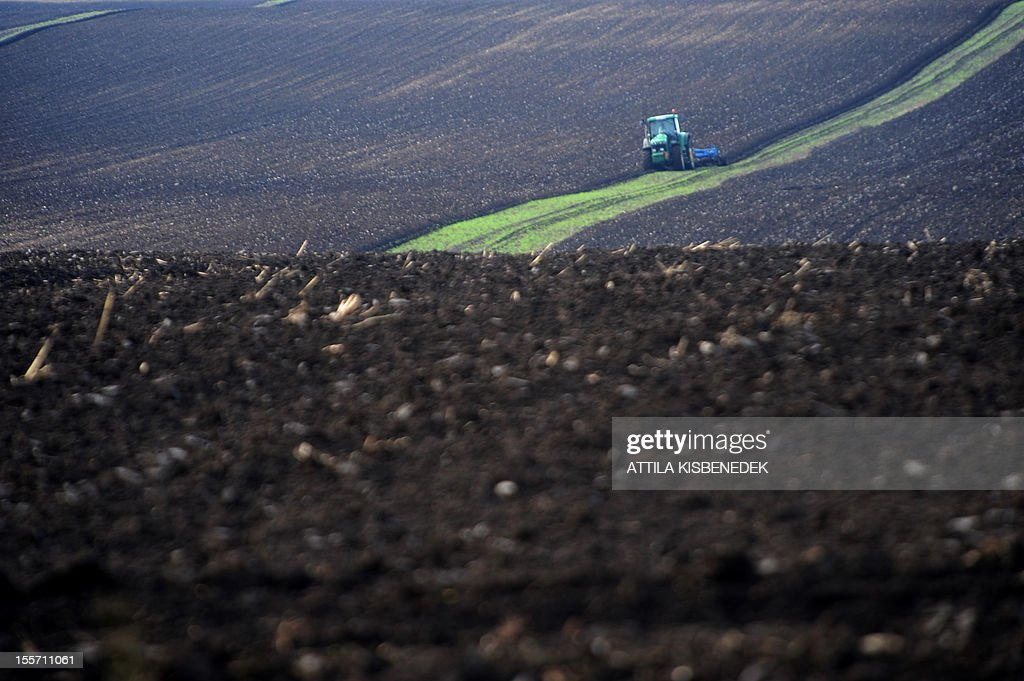 A tractor makes its way to plow a field near the village of Alcsutdoboz, about 45 km west of the Hungarian capital Budapest on November 7, 2012. AFP PHOTO / ATTILA KISBENEDEK