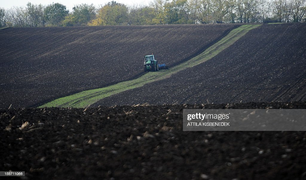 A tractor makes its way to plow a field near the village of Alcsutdoboz, about 45 km west of the Hungarian capital Budapest on November 7, 2012.
