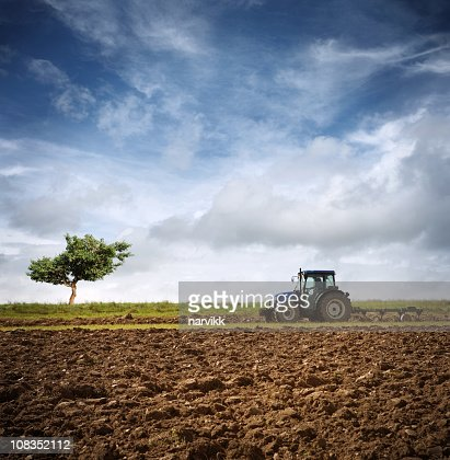 Tractor Ploughing on the Field : Stock Photo