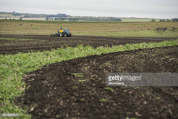 A tractor prepares a field for the replanting of maize on a droughtaffected farm in Mpumalanga South Africa on Friday Nov 27 2015 South African...