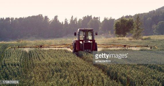Tractor spraying crop, field sprayer