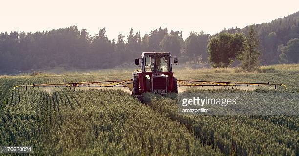 Tractor spraying crop, field sprayer