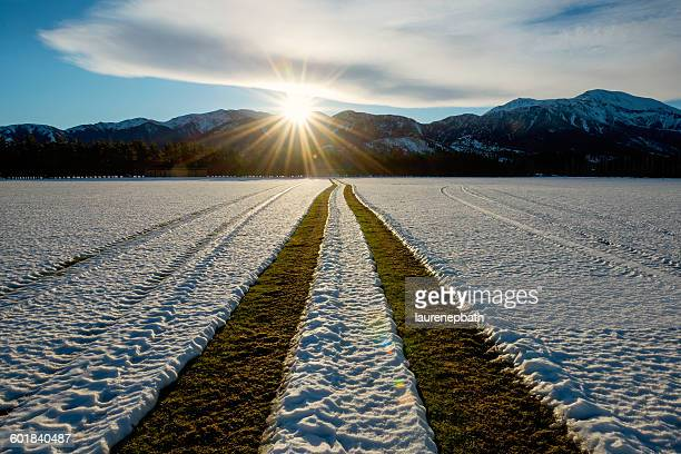 Tractor Tyre tracks in snow covered field, Methven, Canterbury, New Zealand