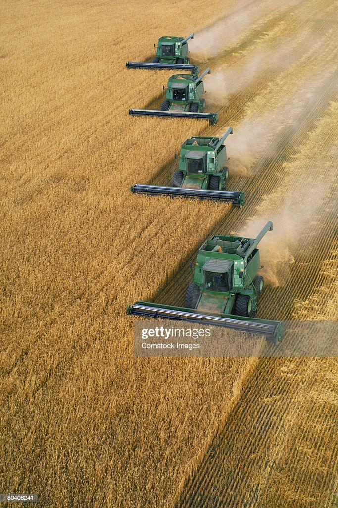 Tractors harvesting crop