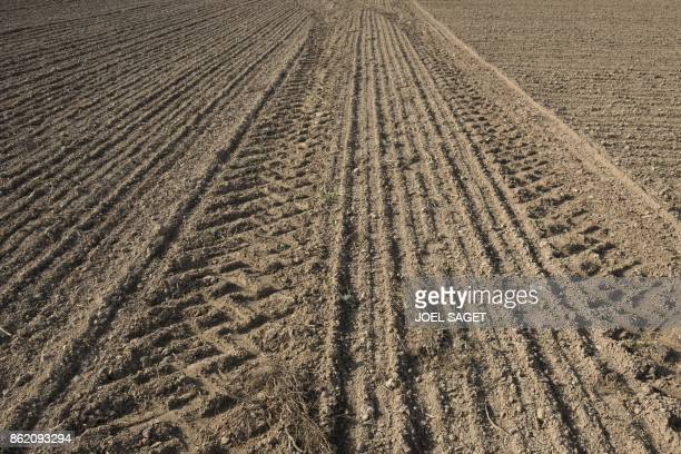 Tractors' tracks are pictured in a field in Pont Audemer on October 15 2017 / AFP PHOTO / JOEL SAGET
