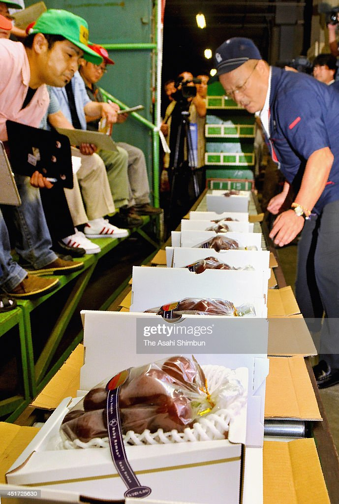 Traders check the 'Ruby Roman' at Kanazawa central wholesale market on July 5, 2014 in Kanazawa, Ishikawa, Japan. A bunch of grape, which weighs 800 grams and have grains more than 36 millimeter in diameter, was auctioned at th eprice of 550,000 Japanese yen (approximately 5,387 U.S. dollars). The grape is sold to a bridal company and will be served to a couple who have a wedding on July 5 and 6.