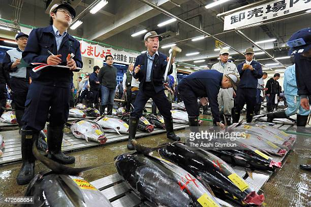 Traders participate in a tuna auction at the Tokyo Metropolitan Central Wholesale Market commonly known as the Tsukiji Fish Market on May 1 2015 in...