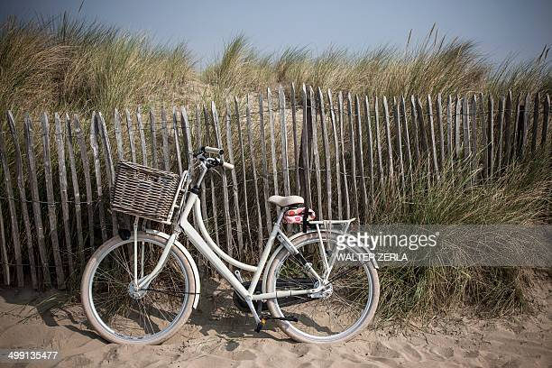Traditional bicycle against sand dune fence, Vollendam, Netherlands