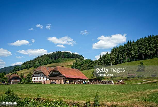 Traditional Black Forest Houses