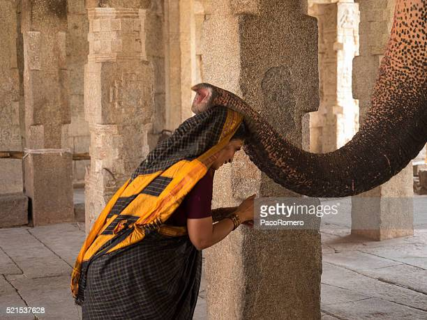 Traditional blessing of the elephant in Hampi, India