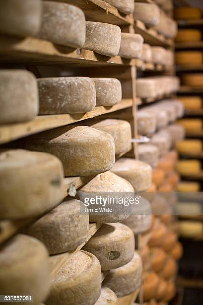 Traditional Cheese production, Bodo, Norway