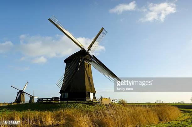 Paysage néerlandaise traditionnelle