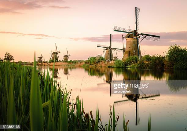 Traditional Dutch windmills at sunrise