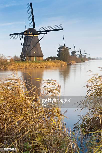 古風なオランダの風車の列で Kinderdijk