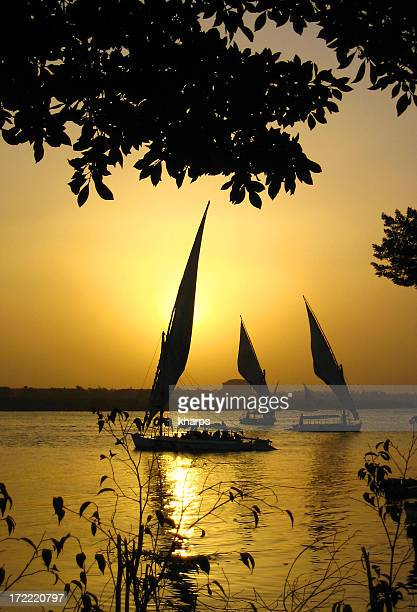 Traditional felucca boats at sunset on the Nile near Cairo
